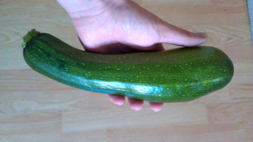 The first home grown courgette of 2011.
