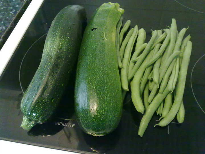 Harvested Courgettes and French Beans.