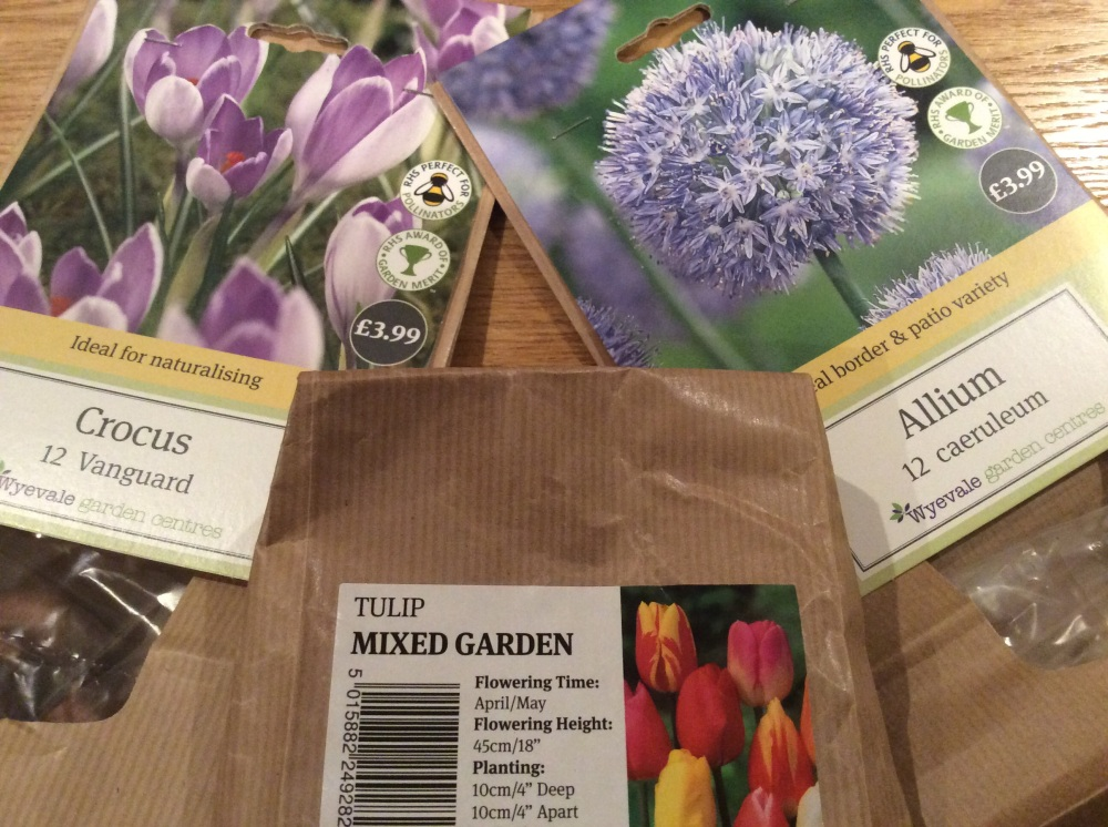 Packs of crocus, tulip, and allium bulbs