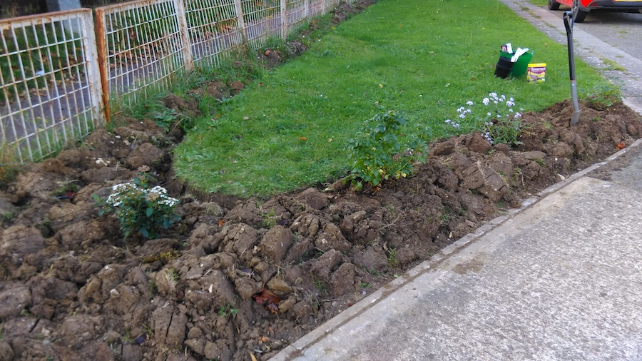 freshly dug front border garden