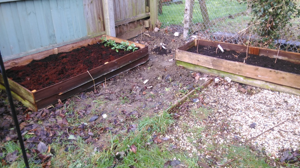 Two raised beds for growing fruit and veg