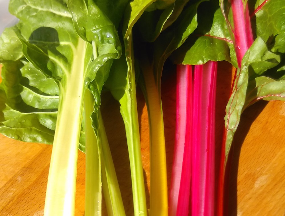 Brightly coloured stems of Swiss Chard